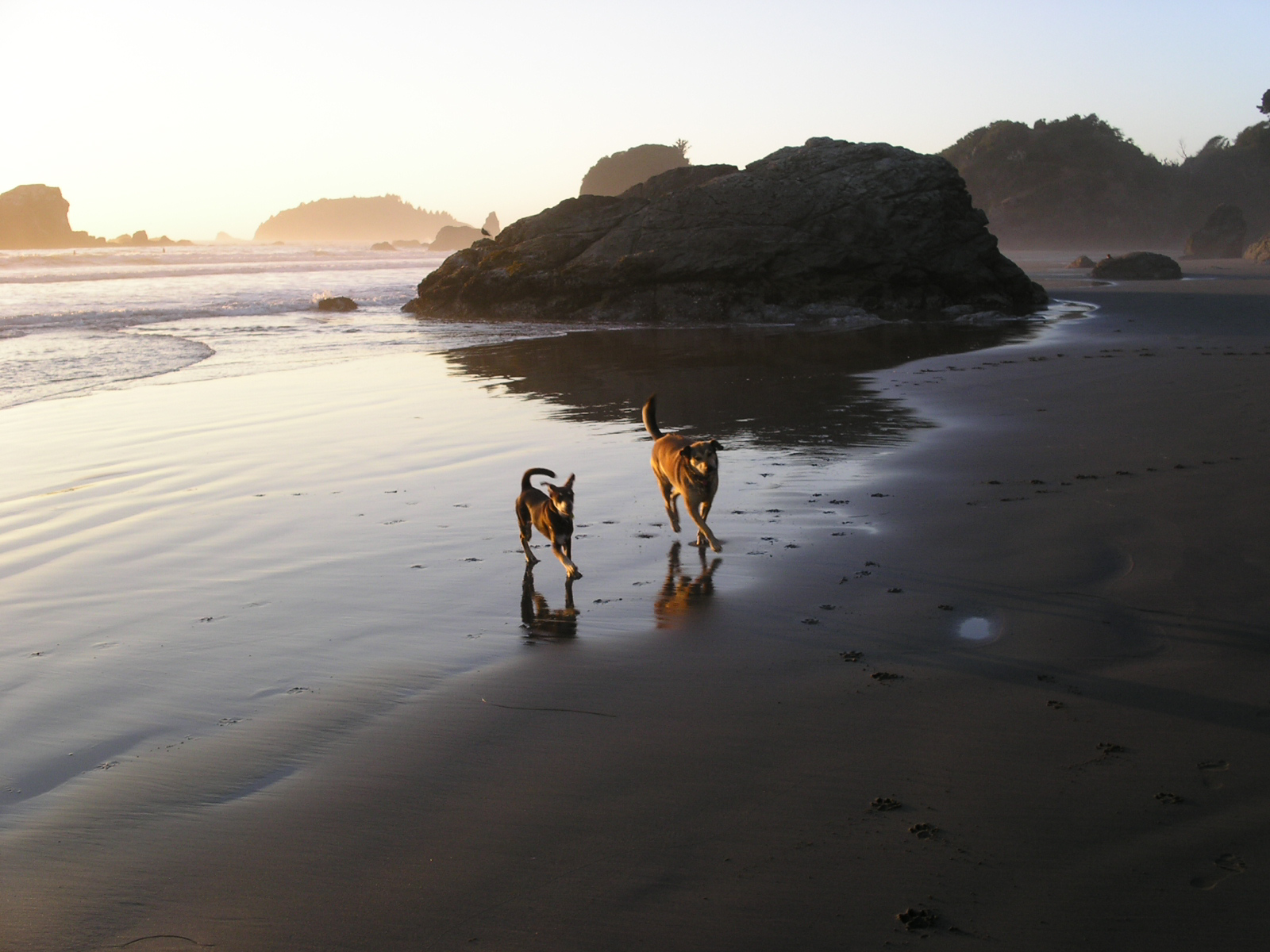 rudy-stella-at-moonstone-beach